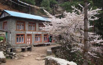 Benkar Guest House au Népal